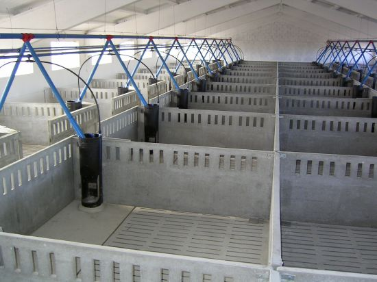 Tabiques de separaci n para las granjas prefabricadas de - Arquetas prefabricadas pvc ...